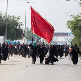 سوگواره چهارم-عکس 20-علی  حسن زاده-پیاده روی اربعین از نجف تا کربلا
