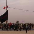 سوگواره پنجم-عکس 29-Hamed Eftekhari-پیاده روی اربعین از نجف تا کربلا