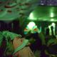 سوگواره پنجم-عکس 1-سیدجمال بخشایش-جلسه هیأت