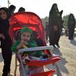 سوگواره سوم-عکس 20-مجید فریدونی-پیاده روی اربعین از نجف تا کربلا