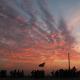 سوگواره پنجم-عکس 1-مهرداد عزیزاللهی-پیاده روی اربعین از نجف تا کربلا