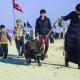 سوگواره سوم-عکس 78-علی ناصری-پیاده روی اربعین از نجف تا کربلا
