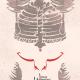 سوگواره پنجم-پوستر 1-زهرا مودتی-پوستر عاشورایی
