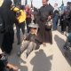 سوگواره چهارم-عکس 16-هادی ابوطالبی-پیاده روی اربعین از نجف تا کربلا