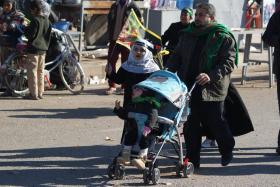 سوگواره دوم-عکس 47-محسن مرادی-پیاده روی اربعین از نجف تا کربلا