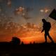 سوگواره چهارم-عکس 7-فرج الله رمضانی-پیاده روی اربعین از نجف تا کربلا