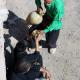 سوگواره چهارم-عکس 9-ghadir vaghari-آیین های عزاداری