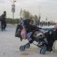 سوگواره پنجم-عکس 115-سید محمد جواد صدری-پیاده روی اربعین از نجف تا کربلا