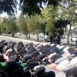 هشتمین سوگواره عاشورایی عکس هیأت-سید حامد آل طاها-بخش اصلی-سوگواری بر خاندان عصمت(ع)