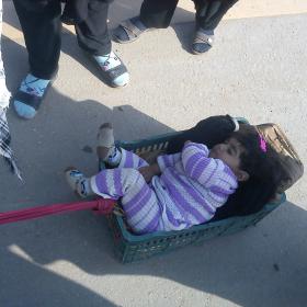 سوگواره سوم-عکس 4-محمود خدابخشی-پیاده روی اربعین از نجف تا کربلا