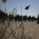 سوگواره دوم-عکس 5-سوده رنج بردار-پیاده روی اربعین از نجف تا کربلا