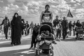 سوگواره پنجم-عکس 50-علی معصومی-پیاده روی اربعین از نجف تا کربلا