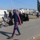 سوگواره چهارم-عکس 34-مجید پناهی-پیاده روی اربعین از نجف تا کربلا