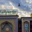 سوگواره چهارم-عکس 20-سید یحیی طباطبائی-پیاده روی اربعین از نجف تا کربلا