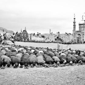 سوگواره چهارم-عکس 106-امیر حسین علیداقی-آیین های عزاداری