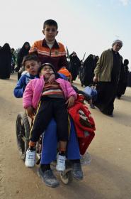 سوگواره دوم-عکس 14-محمدامین غفاری-پیاده روی اربعین از نجف تا کربلا