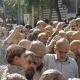 سوگواره پنجم-عکس 15-علی جعفری-جلسه هیأت