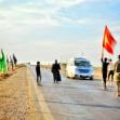 سوگواره پنجم-عکس 6-فاطمه سادات رضاتوفیق-پیاده روی اربعین از نجف تا کربلا