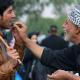 سوگواره سوم-عکس 25-حمید عابدی-پیاده روی اربعین از نجف تا کربلا