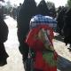 سوگواره دوم-عکس 93-محمد کشاورز-پیاده روی اربعین از نجف تا کربلا