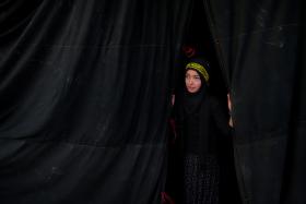 سوگواره سوم-عکس 102-حسین استوار -پیاده روی اربعین از نجف تا کربلا
