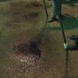 هشتمین سوگواره عاشورایی عکس هیأت-شعبانعلی بهرامی-بخش اصلی-سوگواری بر خاندان عصمت(ع)