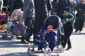 سوگواره دوم-عکس 33-محسن مرادی-پیاده روی اربعین از نجف تا کربلا