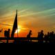 سوگواره پنجم-عکس 52-محمدرضا پارساکردآسیابی-پیاده روی اربعین از نجف تا کربلا