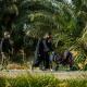 سوگواره پنجم-عکس 36-محمدهادی خسروی-پیاده روی اربعین از نجف تا کربلا