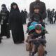 سوگواره چهارم-عکس 45-رحیم حاج حیدری-پیاده روی اربعین از نجف تا کربلا