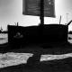 سوگواره پنجم-عکس 129-امیر قیومی-پیاده روی اربعین از نجف تا کربلا