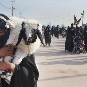 سوگواره سوم-عکس 5-محمد  آهنگر-پیاده روی اربعین از نجف تا کربلا