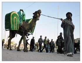 سوگواره چهارم-عکس 30-حمید رضا حبیبی محب سراج-پیاده روی اربعین از نجف تا کربلا