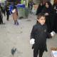 سوگواره دوم-عکس 3-سید جواد علوی زاده-پیاده روی اربعین از نجف تا کربلا