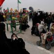 سوگواره چهارم-عکس 49-امير رضا فخري-پیاده روی اربعین از نجف تا کربلا
