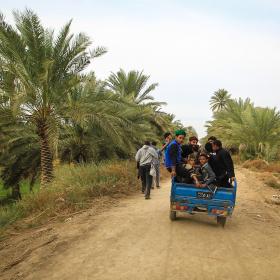 سوگواره پنجم-عکس 68-محمد حسن صلواتی-پیاده روی اربعین از نجف تا کربلا
