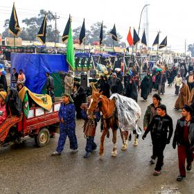 سوگواره چهارم-عکس 15-مجید حجتی-پیاده روی اربعین از نجف تا کربلا