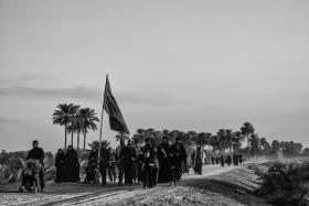 سوگواره پنجم-عکس 66-مرتضی امین الرعایایی-پیاده روی اربعین از نجف تا کربلا