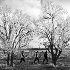 سوگواره چهارم-عکس 7-عطا رنجبر زیدانلو-پیاده روی اربعین از نجف تا کربلا
