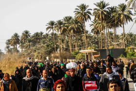 سوگواره چهارم-عکس 21-مجید حجتی-پیاده روی اربعین از نجف تا کربلا