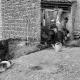 سوگواره پنجم-عکس 78-مرتضی امین الرعایایی-جلسه هیأت