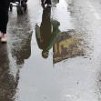 هشتمین سوگواره عاشورایی عکس هیأت-رضا گنج خانلو-بخش جنبی-پیاده روی اربعین حسینی