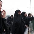 سوگواره پنجم-عکس 21-مسعود ماکاوند-پیاده روی اربعین از نجف تا کربلا