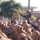 سوگواره چهارم-عکس 11-سینا خان محمدی-آیین های عزاداری