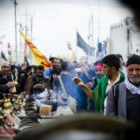 سوگواره سوم-عکس 53-امیر امیدنژاد-پیاده روی اربعین از نجف تا کربلا
