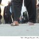 سوگواره دوم-عکس 3-محبت علی سیدی-پیاده روی اربعین از نجف تا کربلا