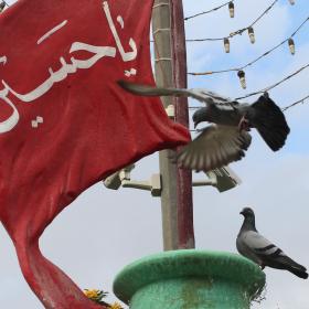 سوگواره سوم-عکس 9-محمد  آهنگر-پیاده روی اربعین از نجف تا کربلا