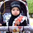 سوگواره پنجم-عکس 19-محمد حسین صادقی-پیاده روی اربعین از نجف تا کربلا