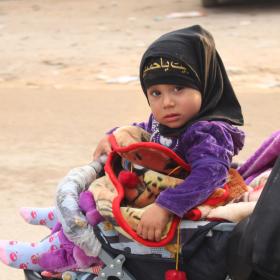 سوگواره سوم-عکس 31-سیده هاله حیدری-پیاده روی اربعین از نجف تا کربلا