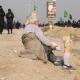سوگواره سوم-عکس 103-سیده هاله حیدری-پیاده روی اربعین از نجف تا کربلا